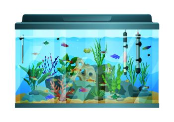 You searched for Fish tank
